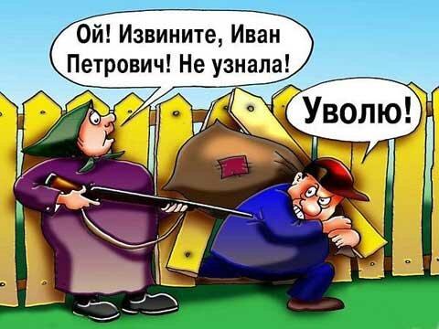 карикатура начальник вор